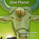 One man one cow dvd